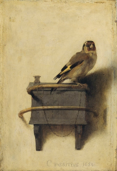 The Goldfinch by Fabritius. Image: commons.wikimedia.orf