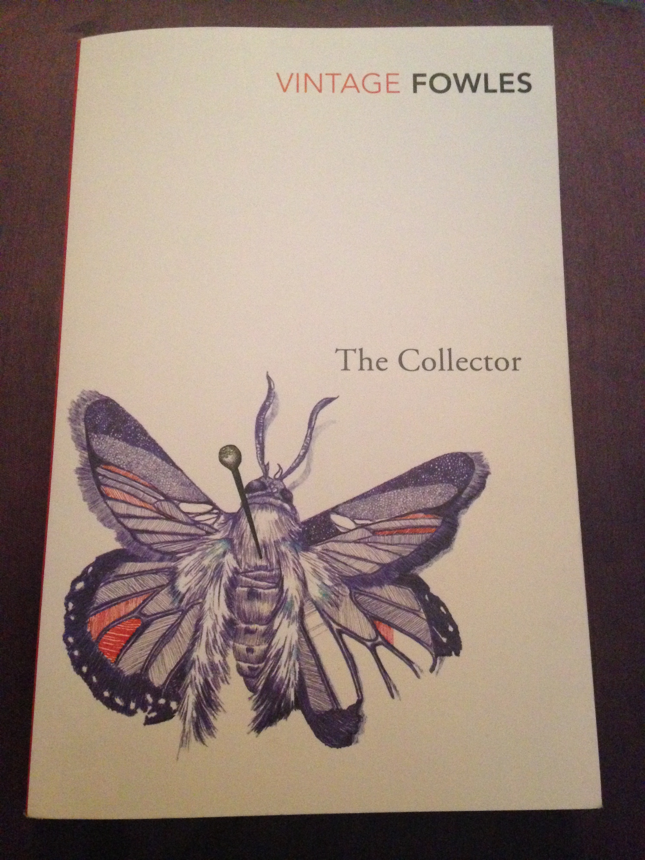 The collector essay
