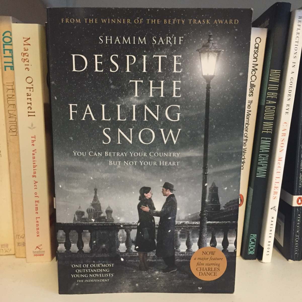 Despite the Falling Snow by Shamim Sarif - blog tour!